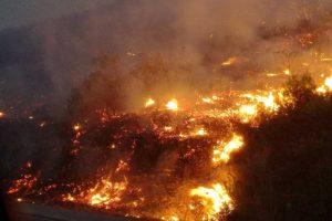 Ολυνύκτια μάχη με τις φλόγες δίνουν πυροσβέστες και ιδιώτες στον Αγαλά! (Photos & videos)